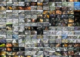 Estado de Vigilancia. Fotogradías de cámaras de Unidad de Control de Tránsito. Impresión digital sobre madera. 160X120 cms. 2005