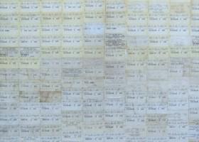 Estado de vigilancia. Boletos de micro sobre madera. 120X80 cms. 2005